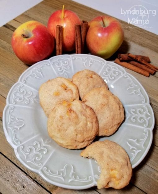 Try a delicious twist on an old favorite with these Appledoodle Cookies! They're Snickerdoodles -- with apples!