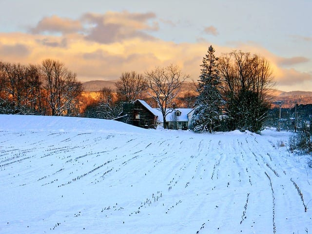 Keep Your Farm Profitable in the Winter