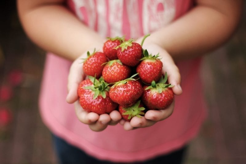 Delicious Strawberry recipes over at Frugal Family Adventures