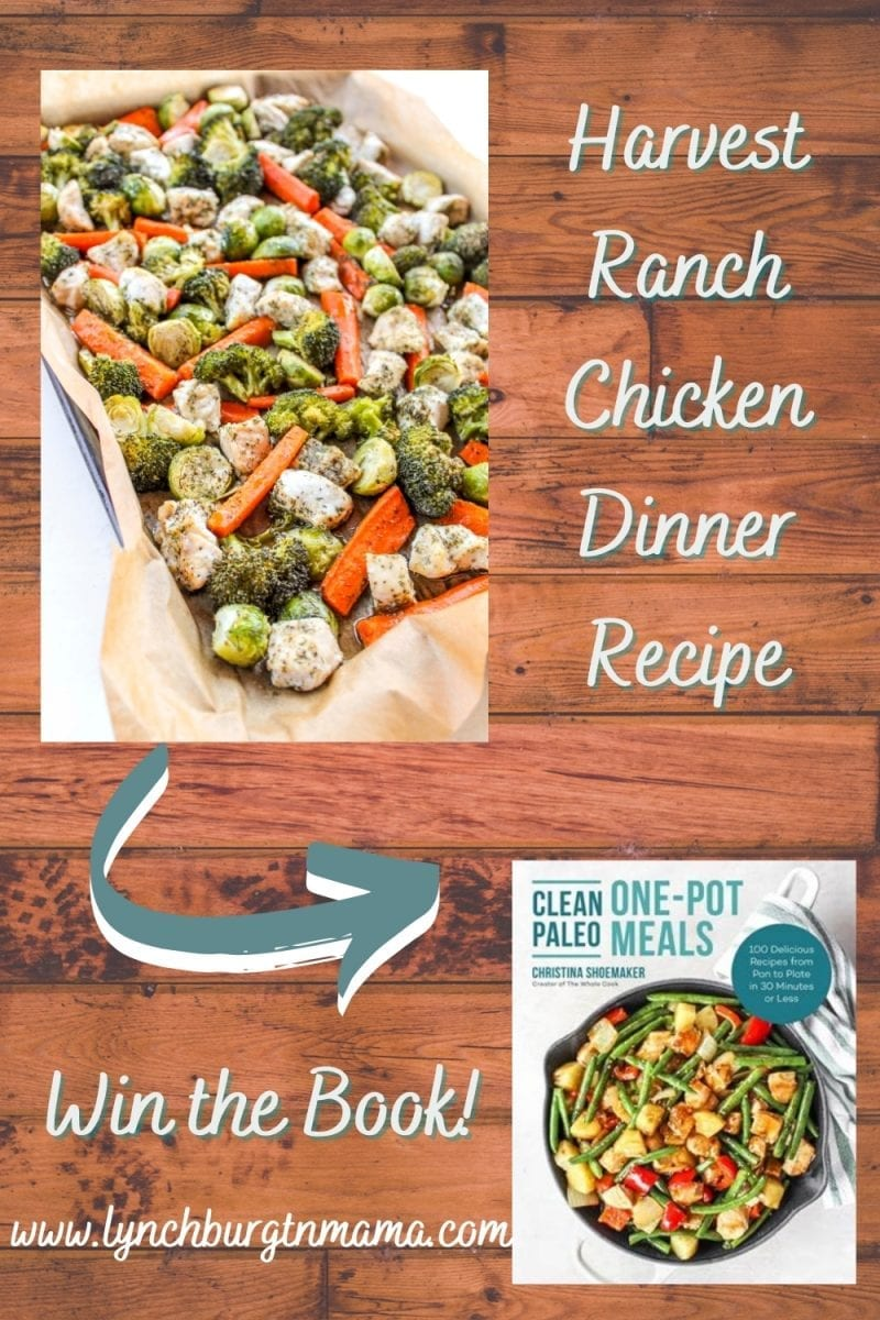 Clean Paleo One-Pot Meals makes living the paleo lifestyle quick and delicious with 100 mouth-watering and family-friendly recipes that are uncomplicated in both time and preparation.