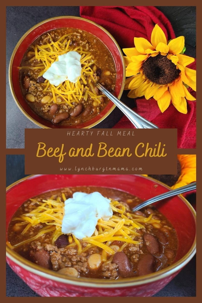 Warm up with a bowl full of Hearty Beef and Bean Chili! It's full of texture, flavor, and comforting!