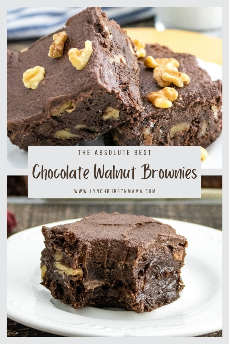 Enjoy fudgy, sweet Chocolate Walnut Brownies today! The icing pulls the brownie and walnuts together without being overly sweet!