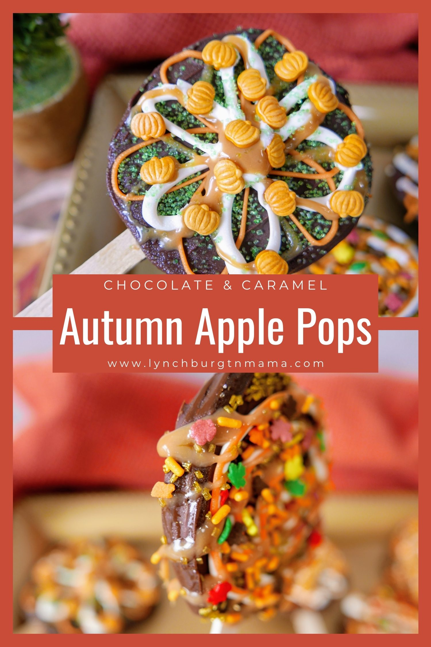 These Seasonal Autumn Chocolate Caramel Apple Pops are a little easier for all ages to handle than a full-sized dipped apple. They are fun to decorate and make your own with chocolate, caramel, sprinkles, and more!